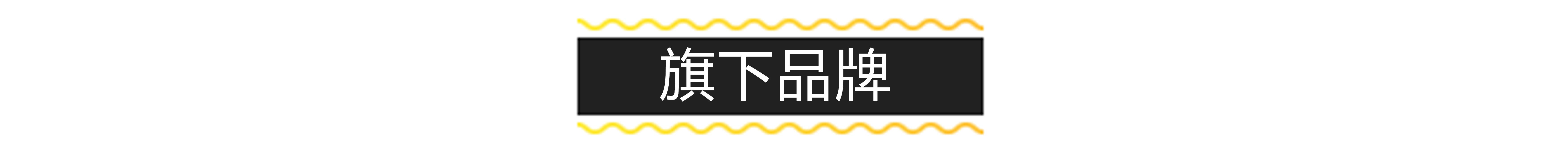 旗下品牌.jpg